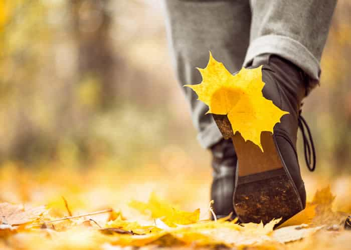 Warrington Solicitors private client image of client walking through the woods. Autumn leaves on the floor.
